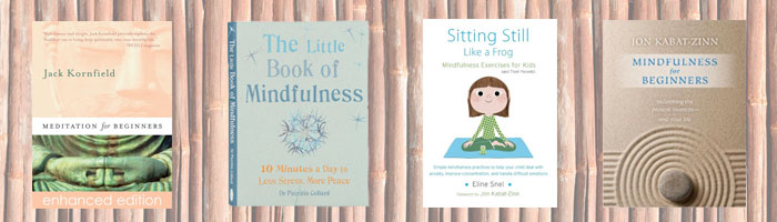 beginner-books-meditation-header
