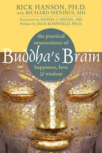 buddhas-brain-meditation-book