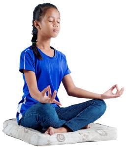 Zabuton Meditation Mats and Cushions